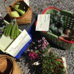 地場産の野菜も並びます