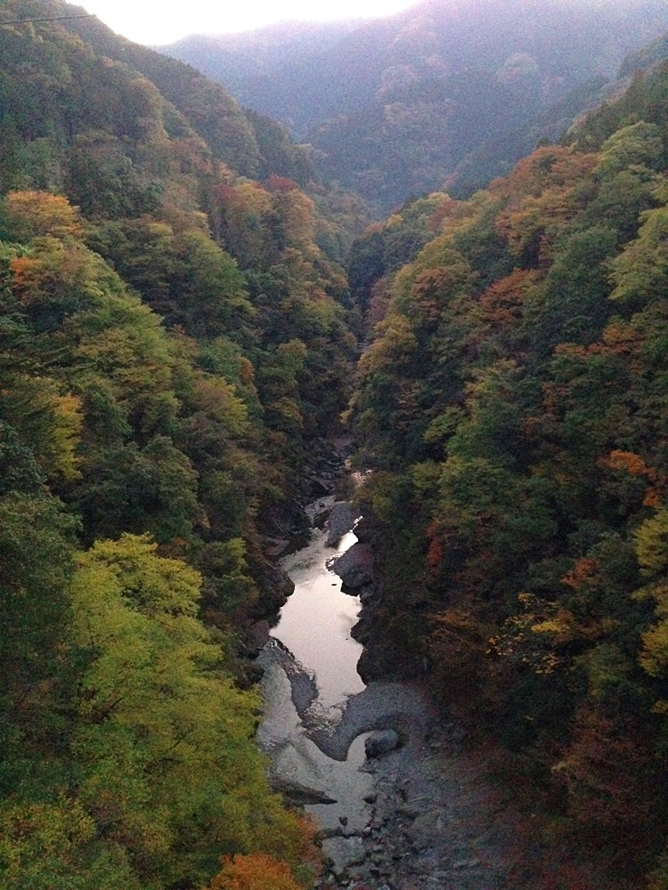 白川橋から中津川方面の紅葉