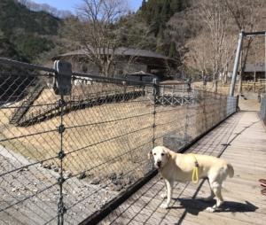 吊り橋からこまどり荘
