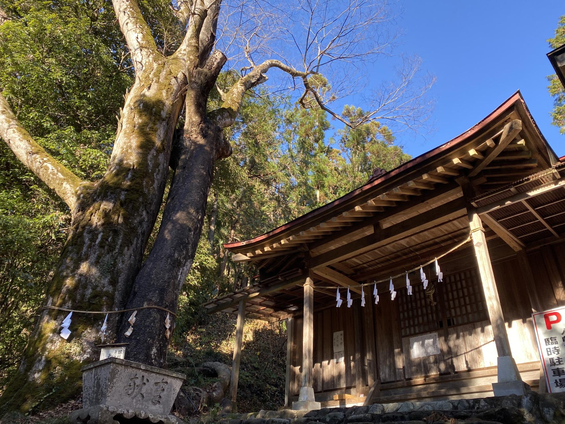 八幡大神社